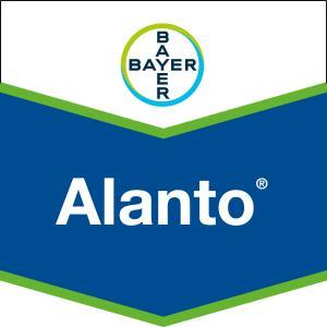 Alanto®