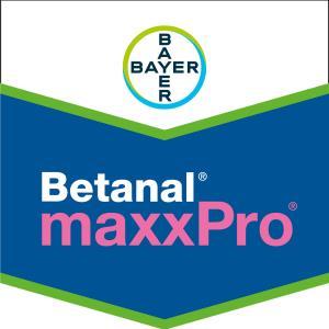 Betanal® maxxPro