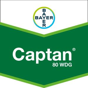 Captan 80 WDG