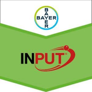 Input®