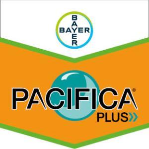 Pacifica® Plus