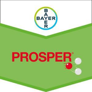 Prosper®